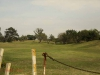 Mandini Sports Club - golf fairways  (2)