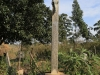 Maria Trost Cemetery (1)