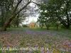 Marrianhill Monastry - Sacred Heart Chapel (22)