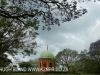 Marrianhill Monastry - Sacred Heart Chapel (5)