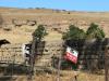 Ongeluksnek Valley Farm Esbi Khaya Farm S 30.18.16 E 28.22.55 (1)