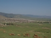 mpompomeni-township-views-from-north-4