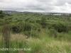 Ladysmith - Kings Regiment views from summit (2)