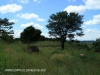 Ladysmith Royal Irish Fusiliers Red Hill 28.3412 S 29.45.13  4. (2)