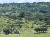 Ladysmith - Tin Town  views - 28.33.18 S 29.44. (2)