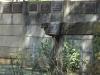 dundee-moth-hall-hardy-gates-isanhlwana-shellhole-s28-09-641-e30-14-154-elev-1259m-10