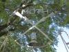 dundee-moth-hall-hardy-gates-isanhlwana-shellhole-s28-09-641-e30-14-154-elev-1259m-13