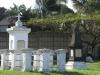 isipingo-delhoo-sykes-road-dick-kings-graveyard-s-29-59-346-e-30-55-523-elev-12m-7
