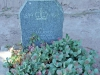 marrianhill-monastery-cemetary-boer-war-british-soldiers-graves-pte-j-jackson