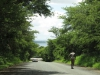False Bay - Entrance road (2)