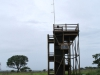 Mkuze - Lebombo viewing deck (10)