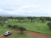 Mkuze - Lebombo viewing deck (8)