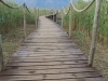 Mkuze - Ghost Mountain Inn - Lake - Boardwalk (2)
