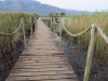Mkuze - Ghost Mountain Inn - Lake - Boardwalk (3)