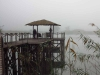 Mkuze - Ghost Mountain Inn - Lake - Boardwalk (8)