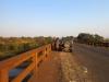 Mkuze River & road Bridge (4)