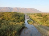 Mkuze River & road Bridge (7)