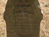 Mooi-River-St-Johns-grave-Charles-Bird35
