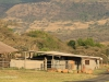 Ukuthula - Africa lodge and game capture (2)