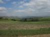 stead-general-cemetery-views-1
