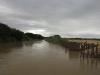 mtuba-mfolosi-mill-mill-road-river-crossing-s-28-27-08-e-32-10-55-elev-42m-4