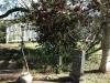 Mtunzini Cemetery - Grave -  Howley