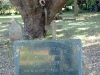 Mtunzini Cemetery - Grave - mabel & John Henry Harwin