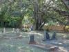 Mtunzini Cemetery - Grave - overall views (2)