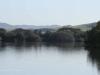 Mtunzini - Lagoon (4)