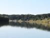Mtunzini - Lagoon (5)
