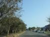 mtunzini-main-street-s-28-56-776-e-31-45-584-elev-75m-1