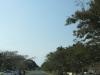 mtunzini-main-street-s-28-56-776-e-31-45-584-elev-75m-2