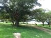 Nagle Dam - Msinsi Picnic site (1)