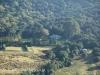 Karkloof Valley Farms (1)