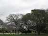 Ndumo Game Reserve Rest Camp (13)