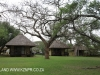 Ndumo Game Reserve Rest Camp chalets (4)