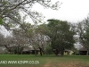 Ndumo Game Reserve Rest Camp chalets (6)