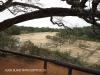 Ndumo Game Reserve Usutu river (1)