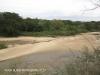 Ndumo Game Reserve Usutu river (3)