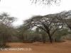 Ndumo Game Reserve picnic site