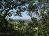 Ndwedwe Road - P100 - Farm south of P100 (14)