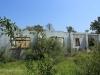 Ndwedwe Road - P100 - Farm south of P100 (15)