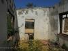 Ndwedwe Road - P100 - Farm south of P100 (17)