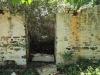 Ndwedwe Road - P100 - Farm south of P100 (25)