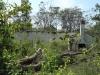 Ndwedwe Road - P100 - Farm south of P100 (5)
