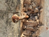 Ndwedwe Village - old prison - gate pin -   (12)
