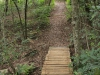 New Germany Nature Reserve - Trails (9)