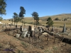 Nkandla Cemetery -  Military Graves - Collective view (4)