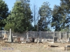 Nkandla Cemetery -  Military Graves - Collective view (6)