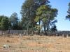 Nkandla Cemetery - Military section